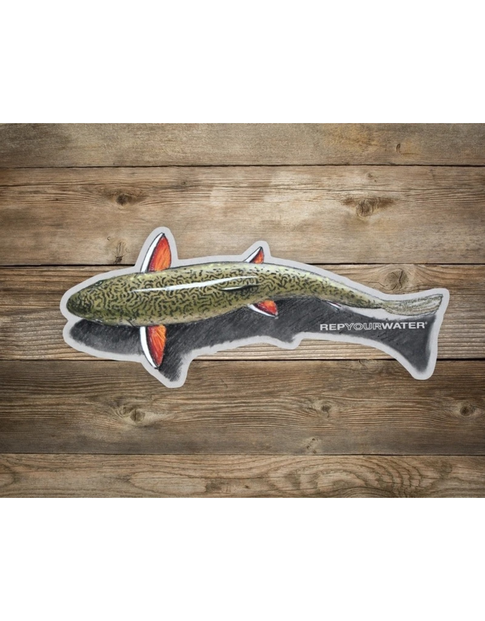 Rep Your Water RepYourWater Artist Reserve Shallow Water Brookie Sticker - Large