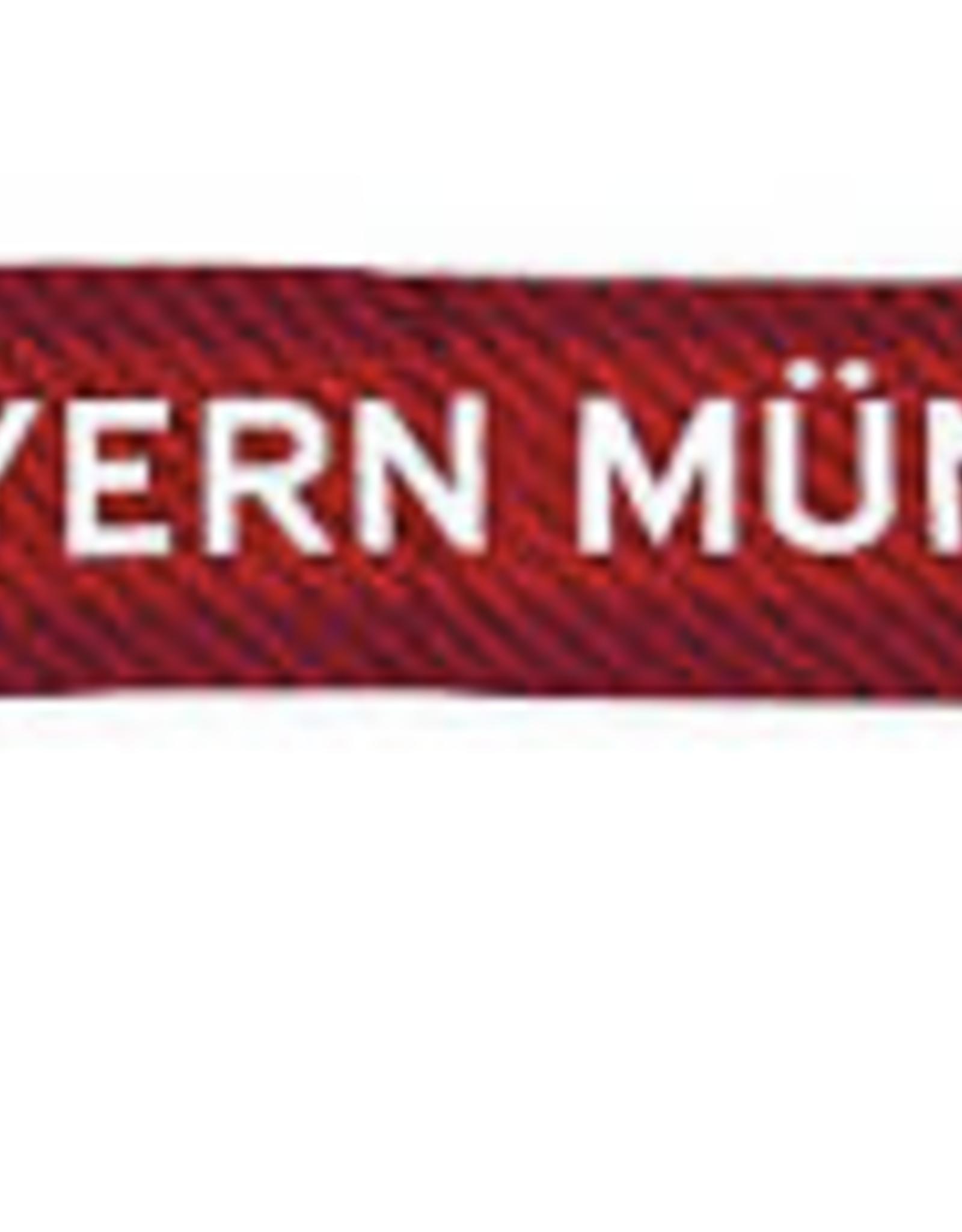 FC Bayern Munchen Scarf