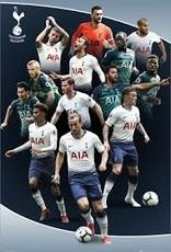 Tottenham Player Poster