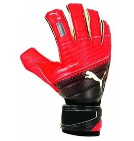 Puma Puma EvoPower Protect 2.3 GC Goalkeeper Glove