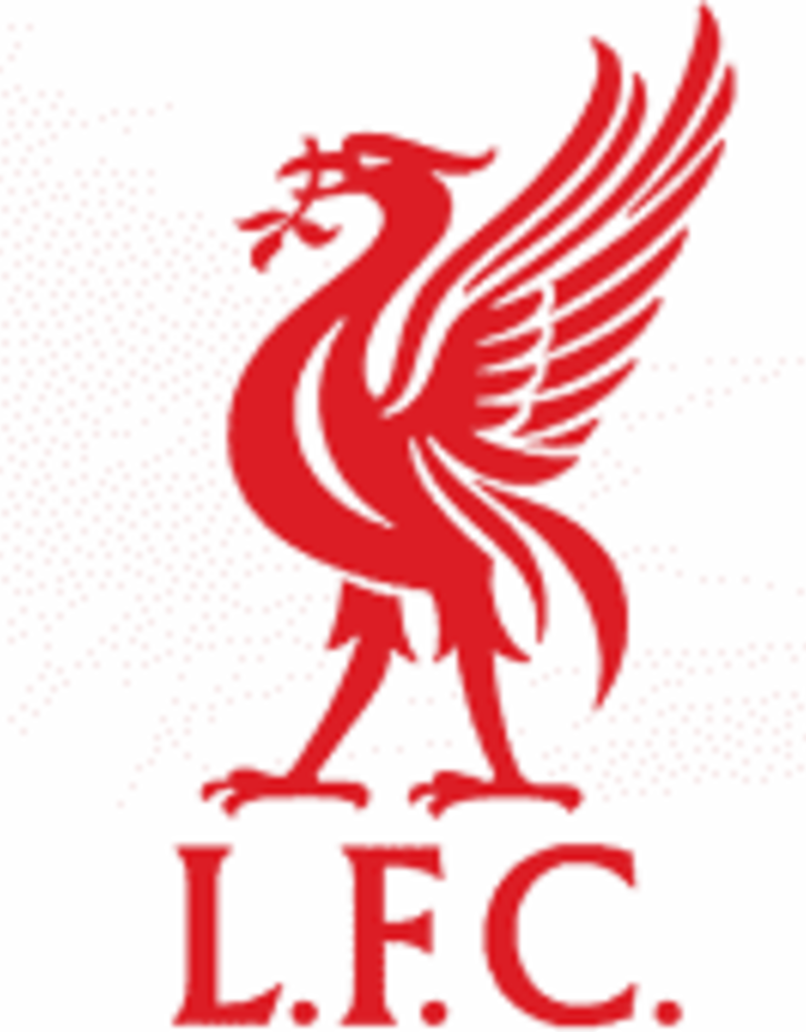 Fast Patch Liverpool Patch