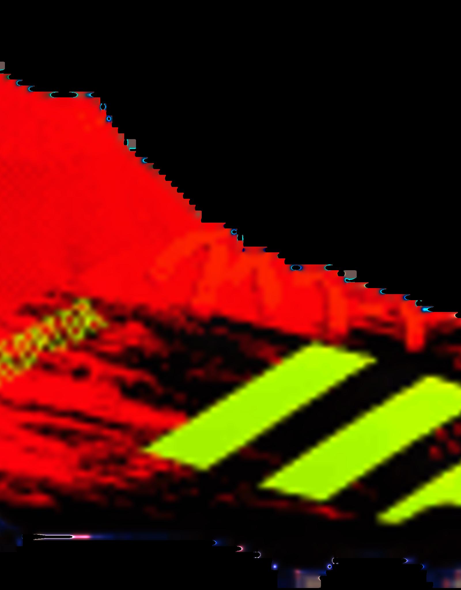 Adidas Adidas Predator 20.3 FG J