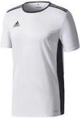 Adidas Adidas Entrada 18 Jersey