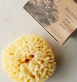 Baudelaire Baudelaire | Wool Sponge