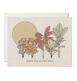 Red Cap Red Cap | Desert Plants Thank You (boxed/single)