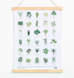 Another Studio Another Studio | Houseplant Art Print