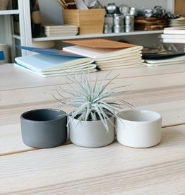 Be Home Ceramic Air Plant Holder