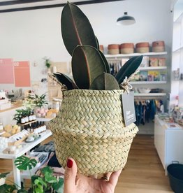 Tiny Seagrass Basket