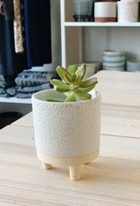 """Accent Decor Delray Footed Pot 3x3.75"""""""