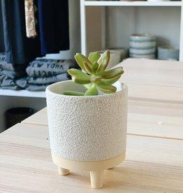 Accent Decor Mini Footed Pot