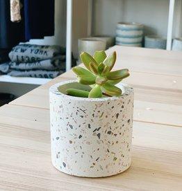 Accent Decor White Terrazzo Pot Mini