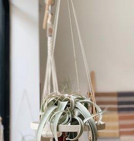 Ceramic Hanging Plant Stand