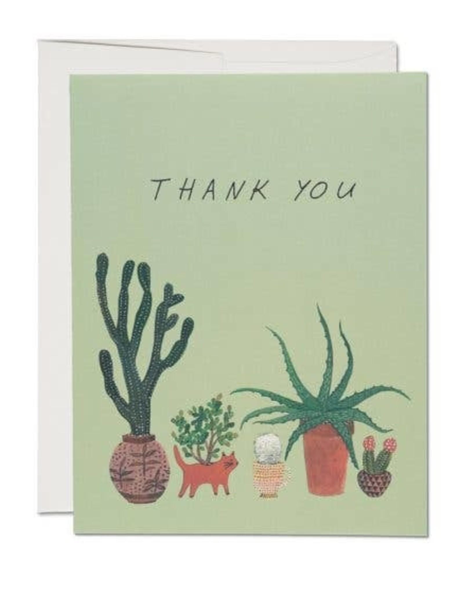 Red Cap Red Cap   Cactus Thank You