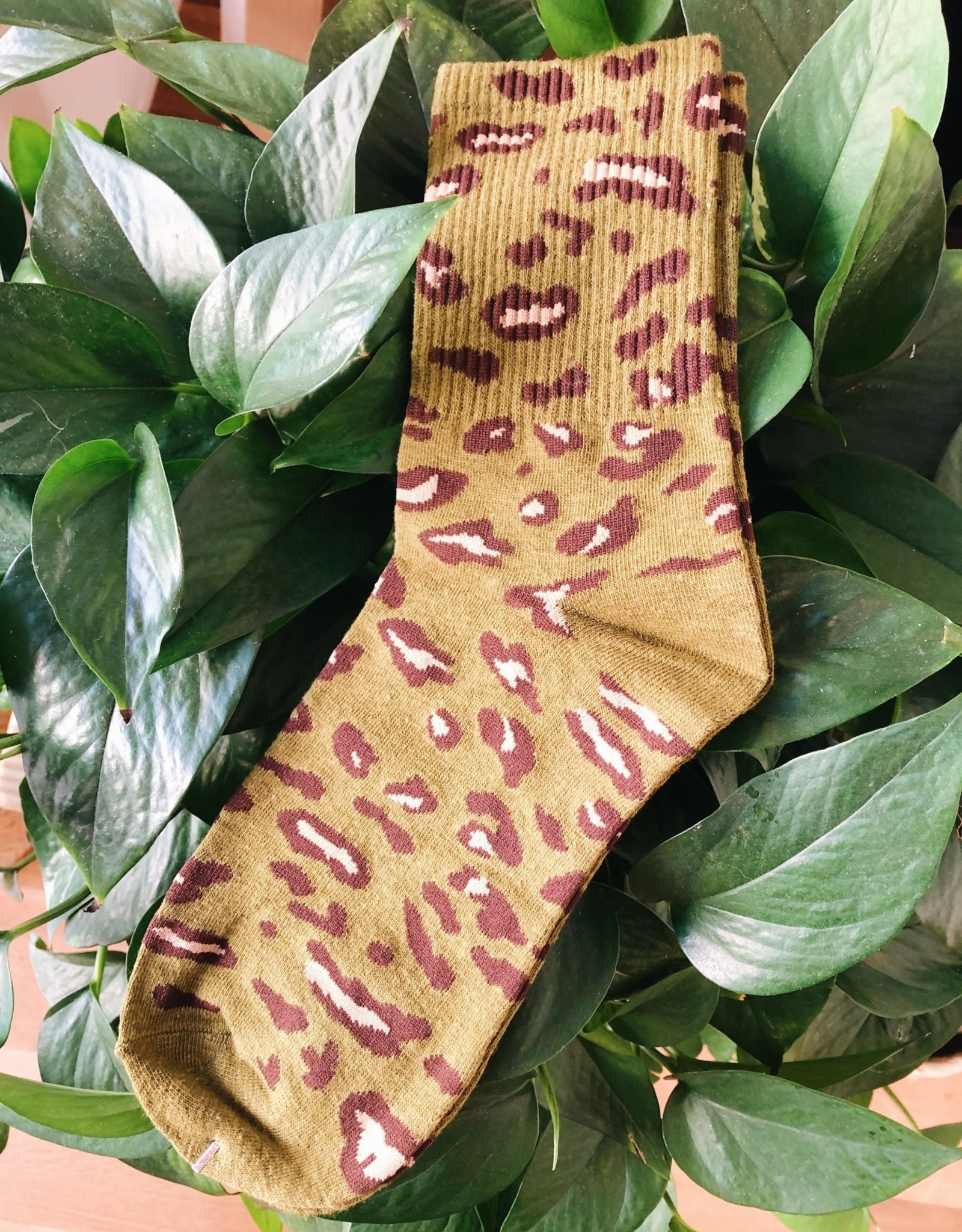 Assorted Leopard Socks