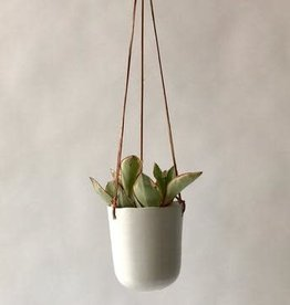 "4"" Doni Hanging Plant Pot"