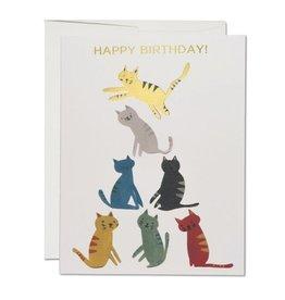 Red Cap Gold Kitty Birthday Card