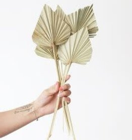 Creative Co-Op Spear Cut Palm Bunch - 6 stems