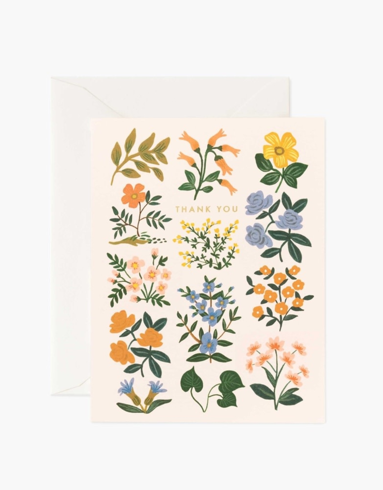 Rifle Paper Co. Rifle Paper | Wildwood Thank You Boxed Set (Set of 8)