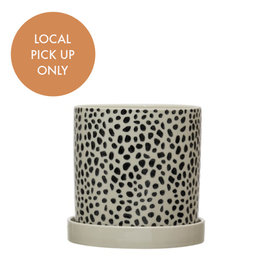 Black and White Spotted Pot 6""