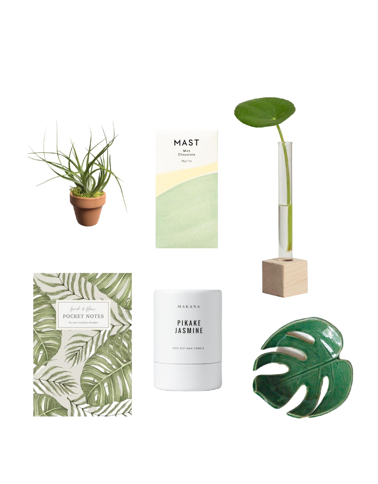Plant Mama Gift Box