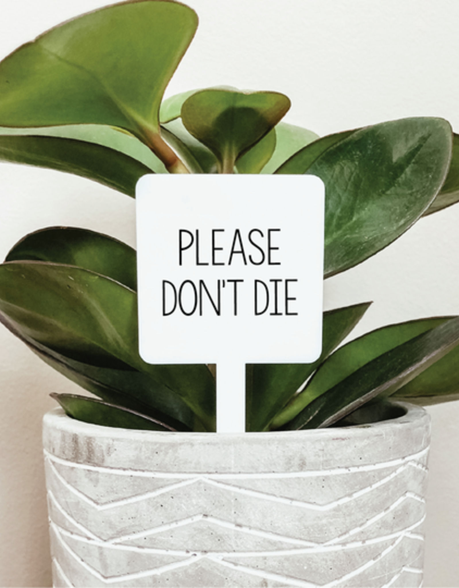 Knotty Design Co. Knotty Design Co. | Please Don't Die Marker