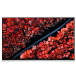 LG 4K 65'' HDR OLED Glass TV w/ AI ThinQ