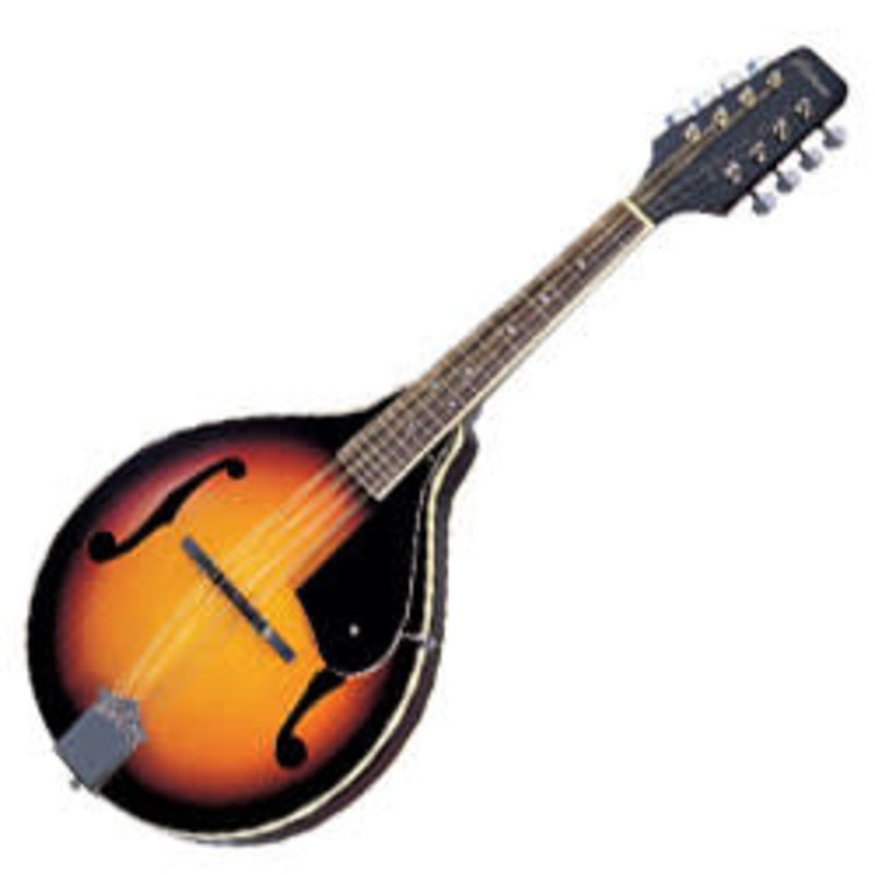 Basic Mandolin
