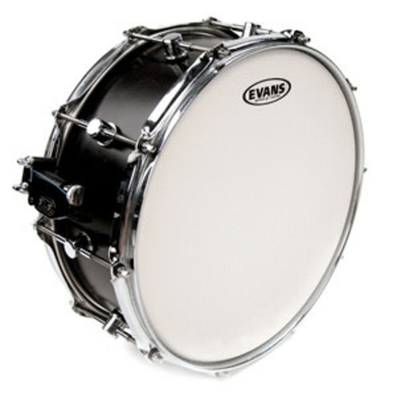 Genera G1 Coated Single Ply Drumhead