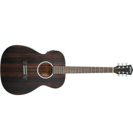 Washburn Deep Forest Folk Elec/Accoustic