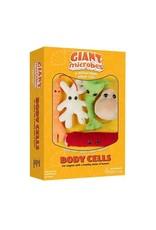 Cellule de corps en peluche