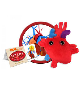 Plush Heart Organ