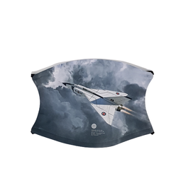 Masque d'Avro Arrow Gris
