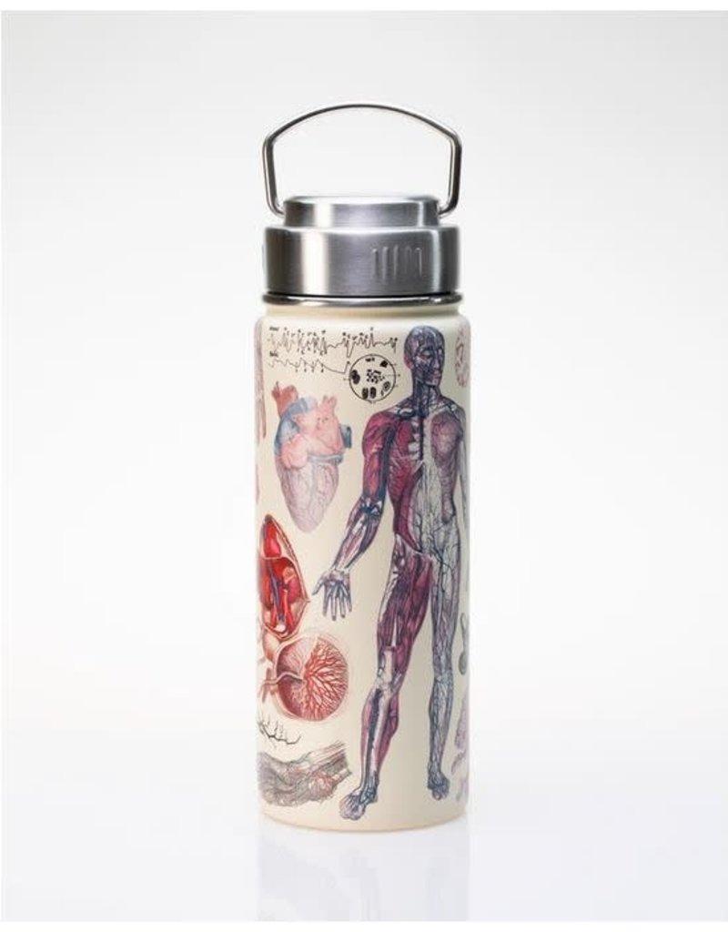 Bouteille isolante en acier inoxydable avec illustrations de l'anatomie humaine
