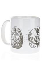 Mega Mug Brain Anatomy