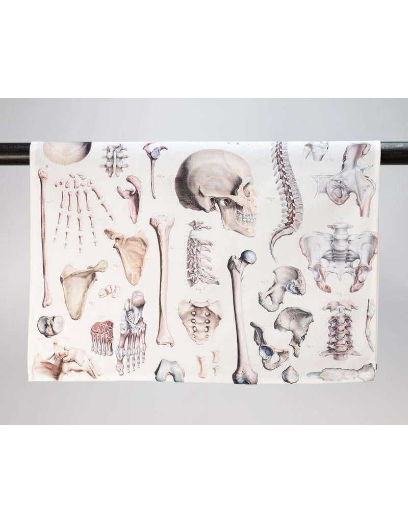 Linge à vaisselle à imprimés de squelette