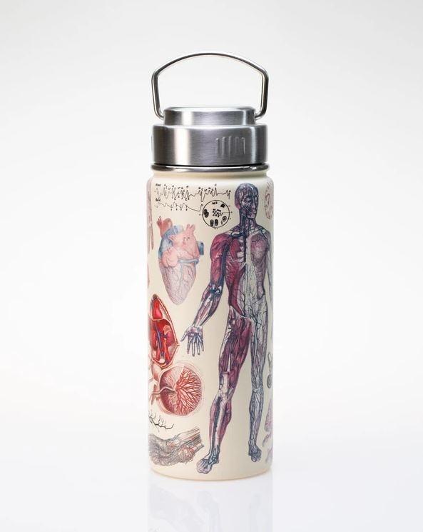 Human Anatomy Stainless Steel Vacuum Flask