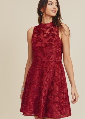 Burgundy Burn Out Velvet Dress