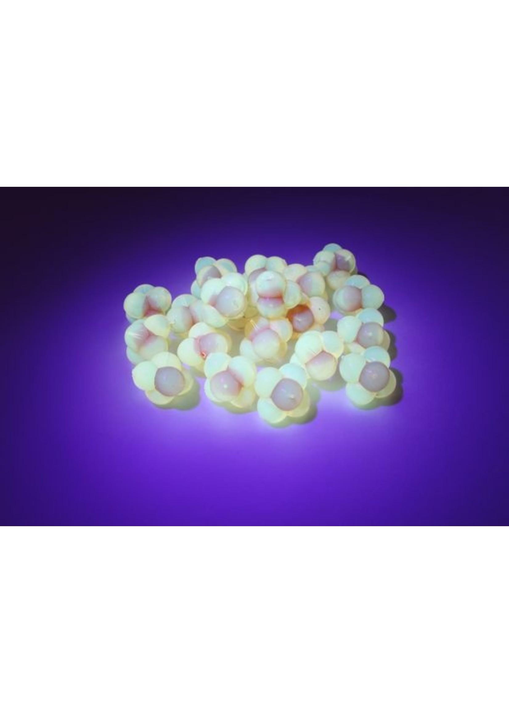 Cleardrift Cleardrift Embryo Egg Clusters Lg Nat Org w/Red Embryo