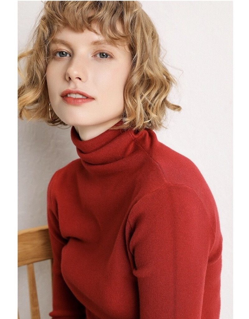 Luna Clothing Out of Your Shell Turtleneck