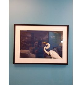 Vaughan John Marion's Framed Photography - Crane in Blue