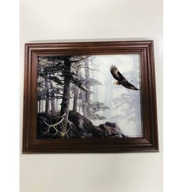 North York Eagle in the Forest Framed Art