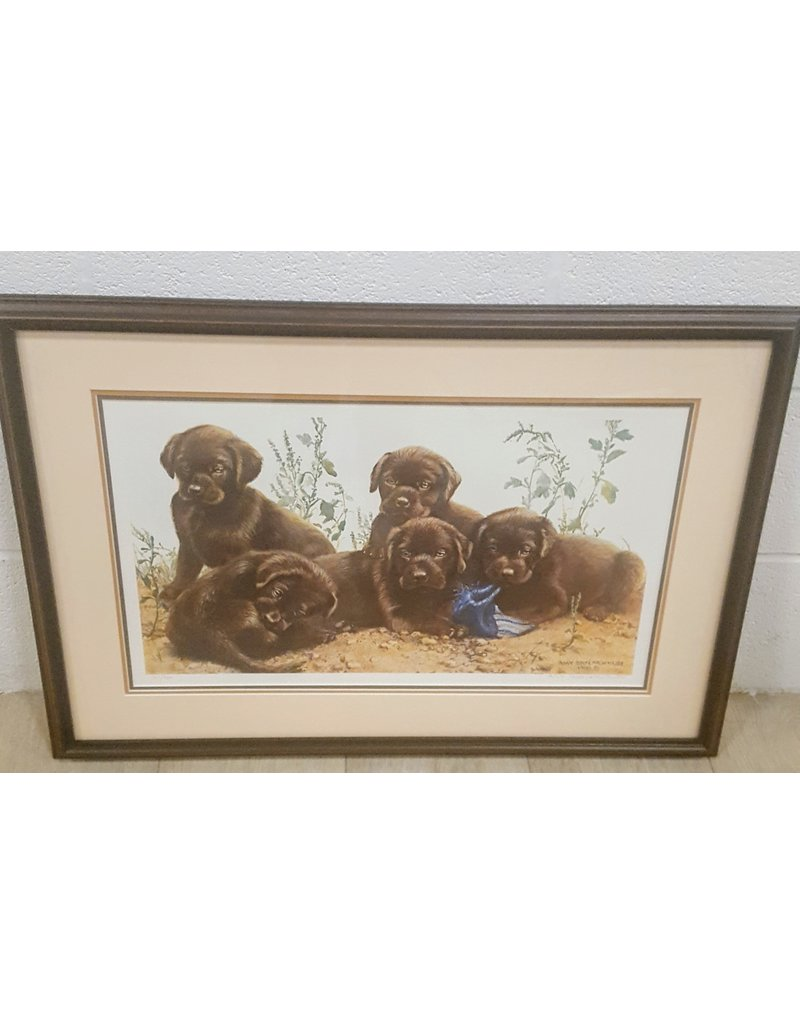 East York Chocolate Labrador painting