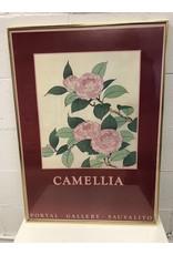North York Camellia Wall Art