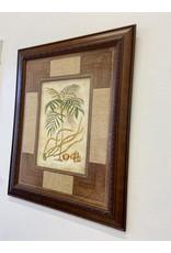 Etobicoke Parlour Palm
