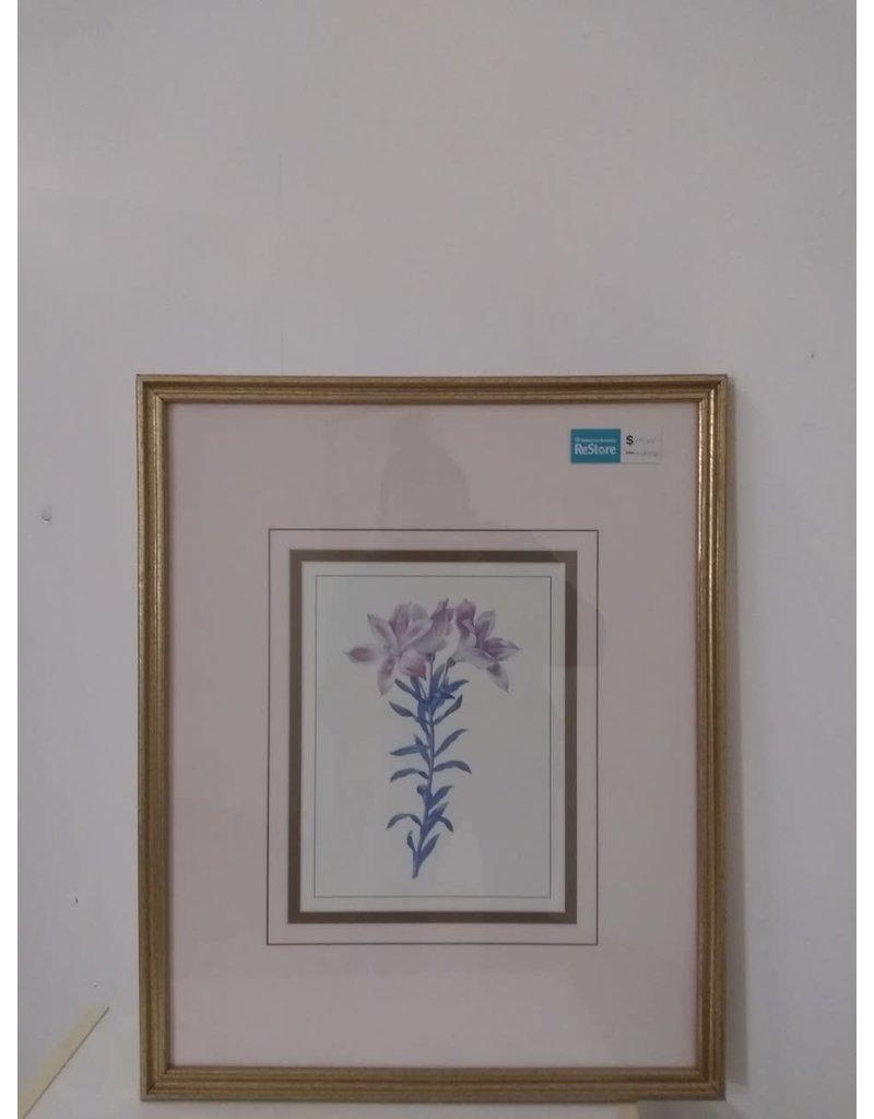 Oshawa Flower Picture