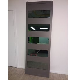 Studio District Mirrored Closet Door