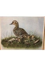 Scarborough Family of Ducks Painting