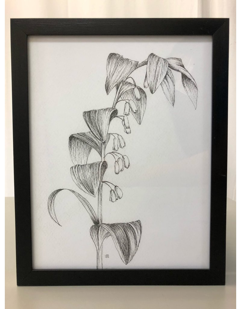 Scarborough Flower Sketches