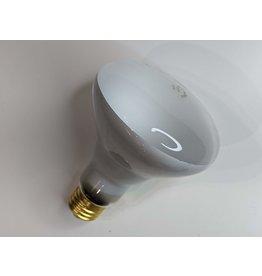 Newmarket Symbian Reflector Lamp Bulb