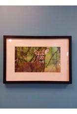 Vaughan A Deer II - by John Marion